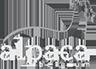 Alpaca Belgium Logo